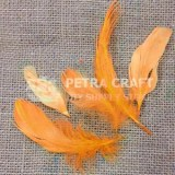 ft03-hen-orange-petracraft